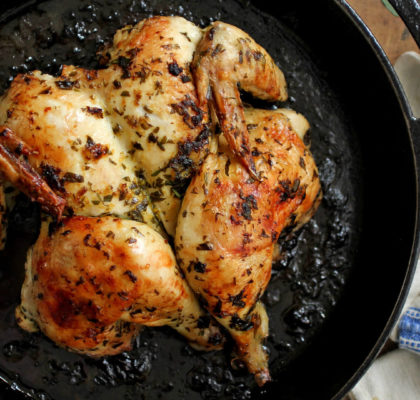 Braised Chicken with Tarragon Recipe